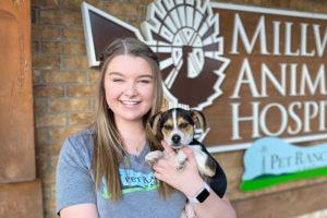Allie at Millwood Animal Hospital